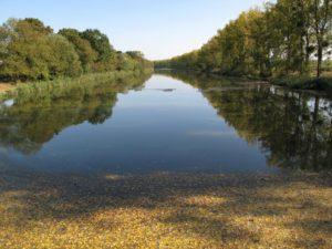 Canal, Basse-Loire, Bretagne sud, vélo, pêche, canotage, Quai-vert